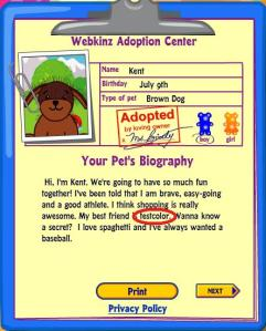 brown-dog-adoption-flaw